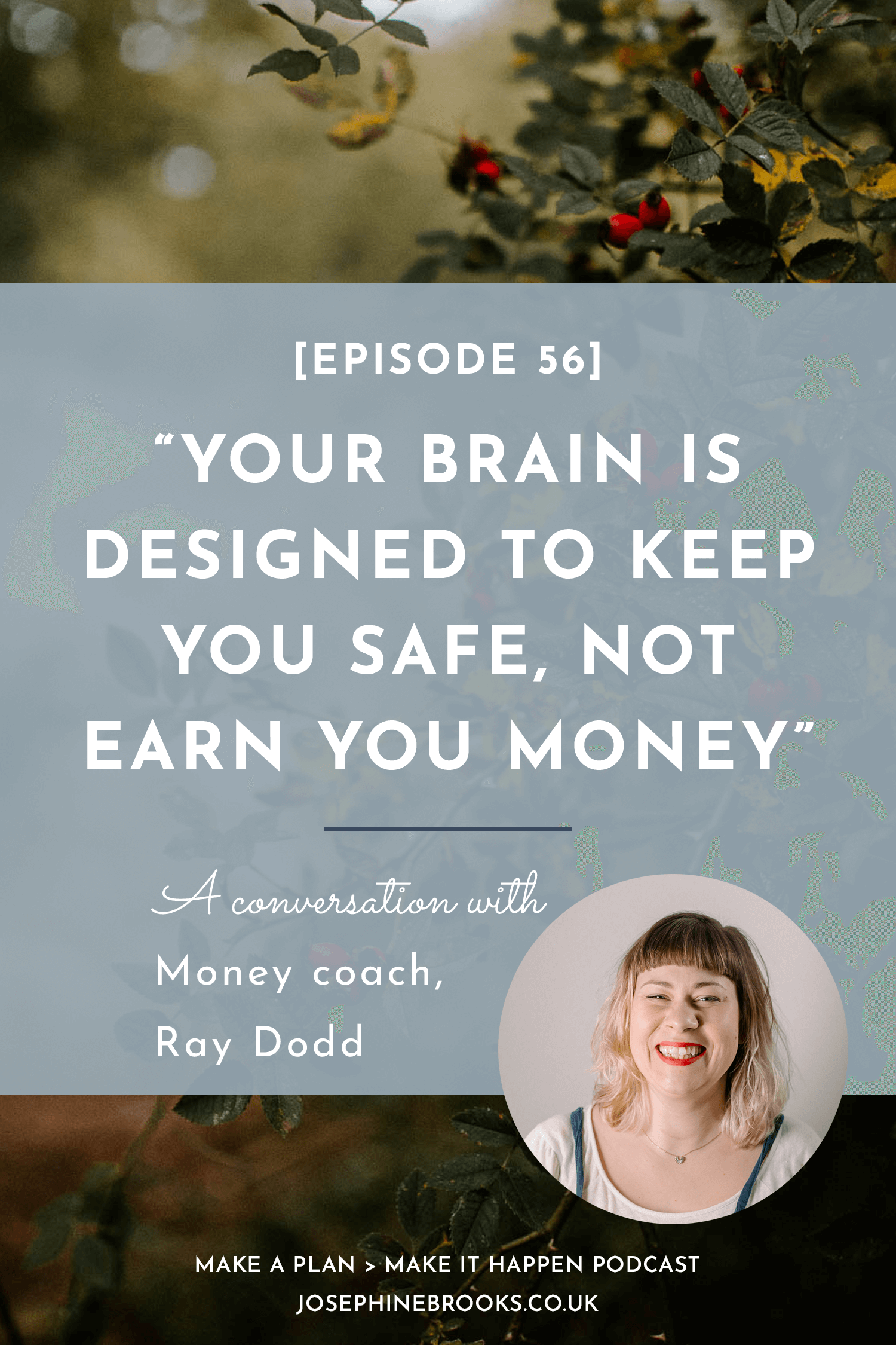 Your brain is designed to keep you safe, not earn you money - a conversation with money coach, Ray Dodd for Make a Plan, Make it Happen podcast
