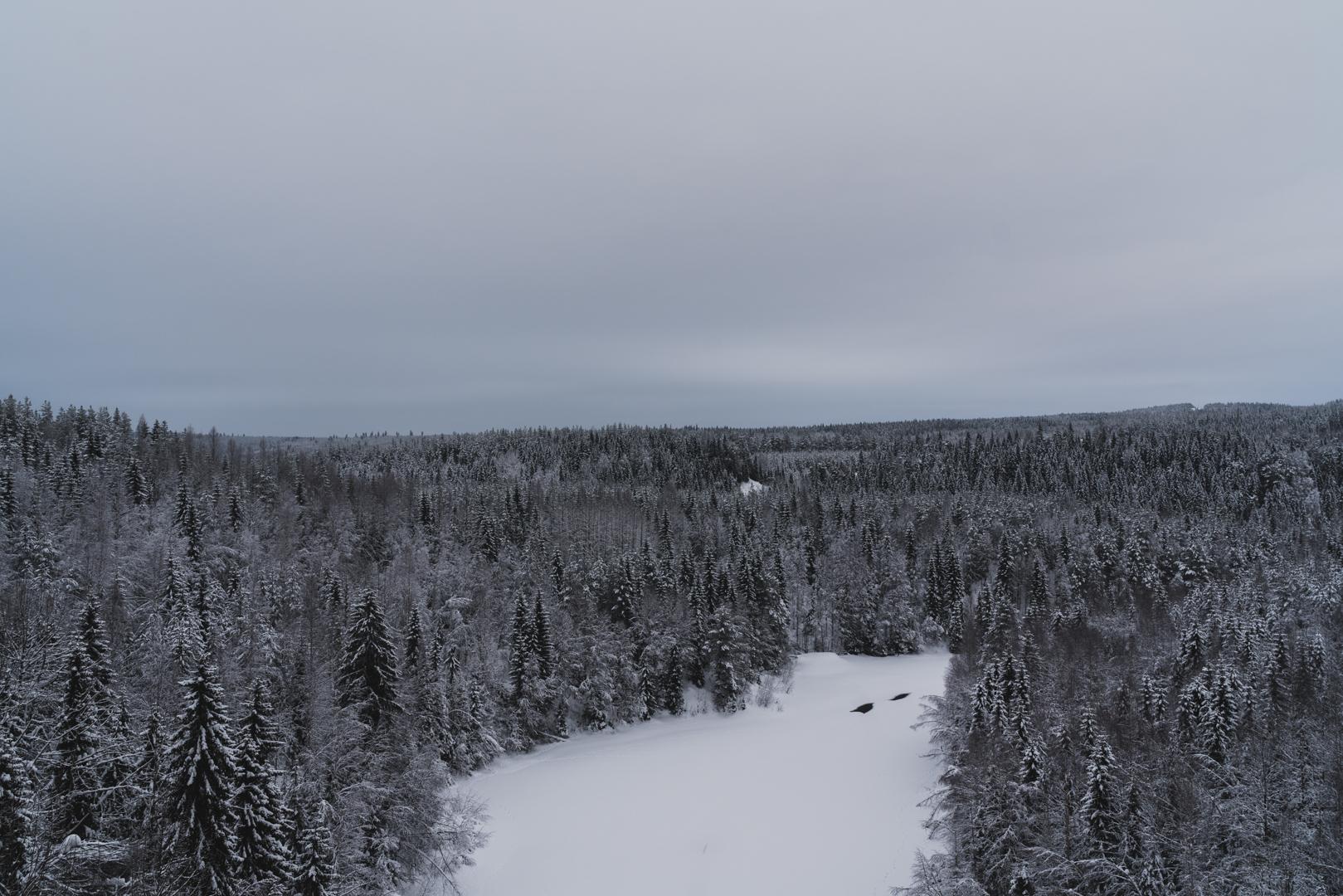Först försöker vi ta oss upp på den avstängda bron, den som är täckt av snö och vars väg skogen har försummat. Vi får snö i skorna, tassar på skoterspår, får snö upp till vaderna. Sen ser vi oss besegrade av vintern och tar oss upp på vägbron istället. Det kommer knappt några bilar så vi kan gå fritt, titta ner, få overklighetskänslor och kasta snö ner mot den frusna älven. Säga  vi får försöka komma tillbaka hit om vi är kvar i Umeå under sommaren , tänka att  det kommer nog troligtvis inte hända  och det känns både bra och dåligt. Så som det känns alltid nu, en skräckblandad längtan till månaderna som väntar.