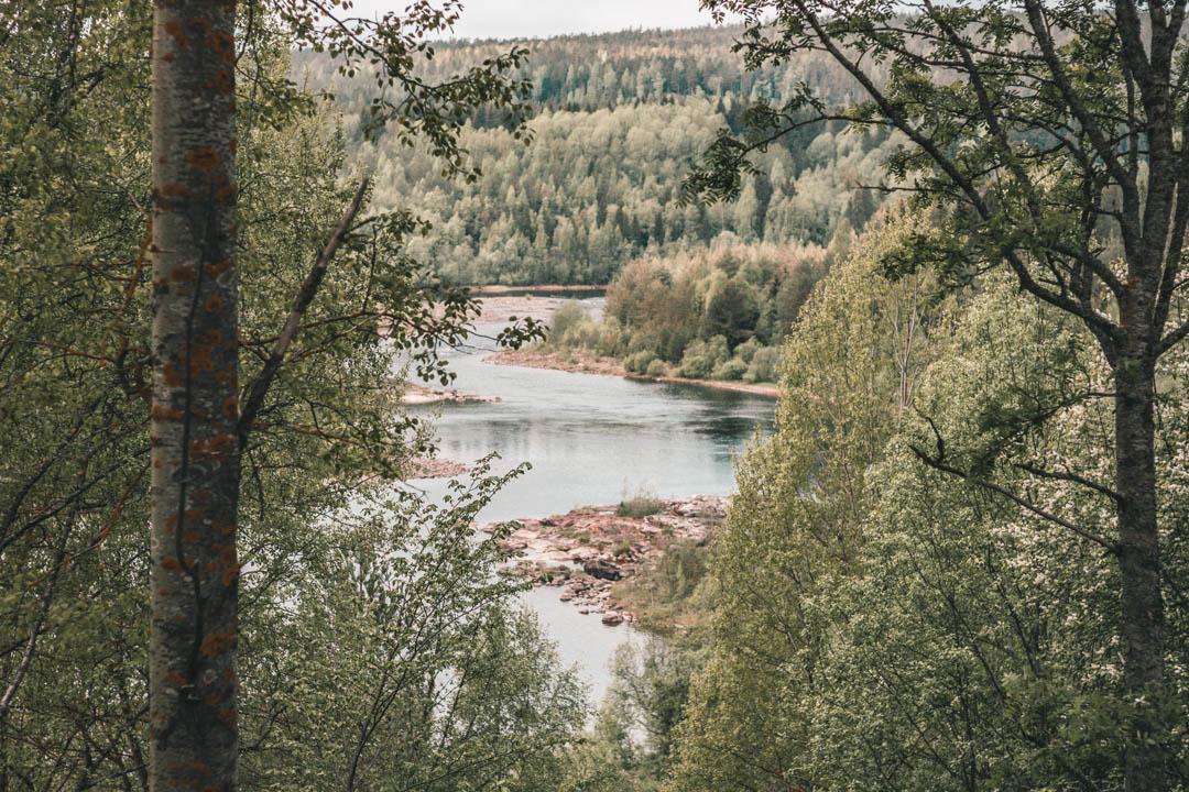 umeå+baggböle+sommar+guide