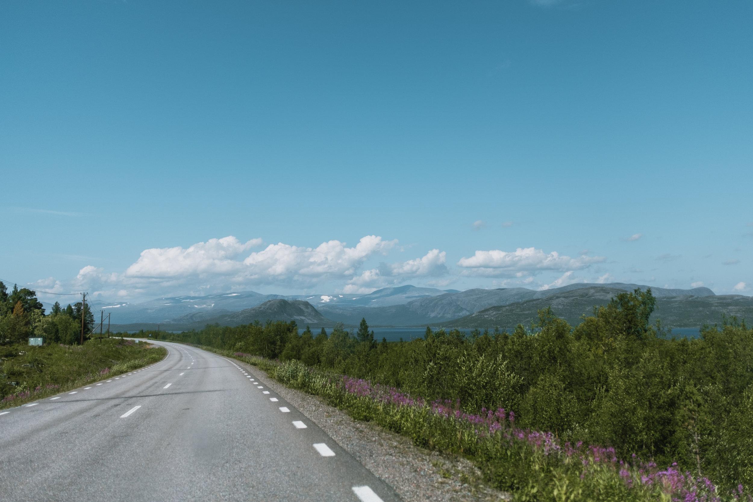 abisko+nationalpark+vandring
