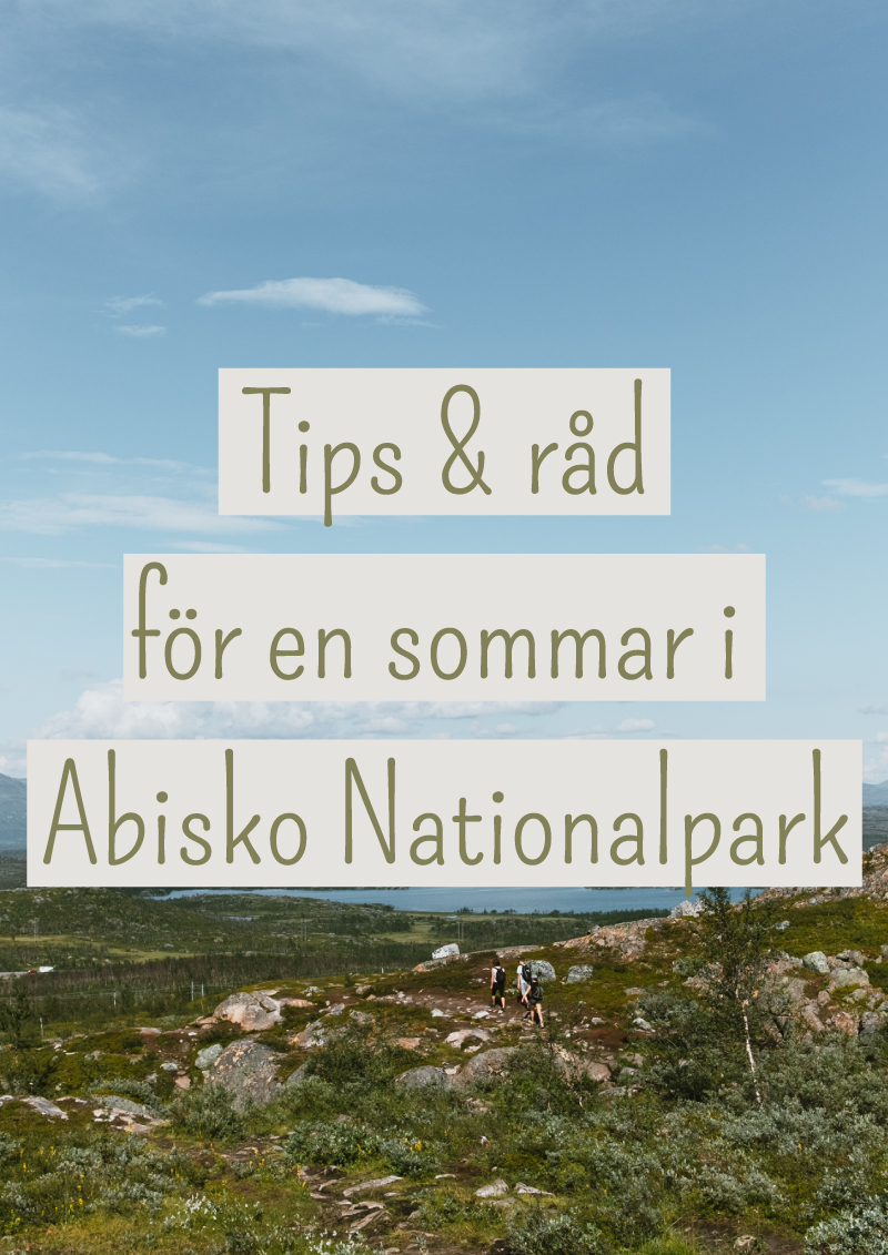 abisko nationalpark+vandra+sverige