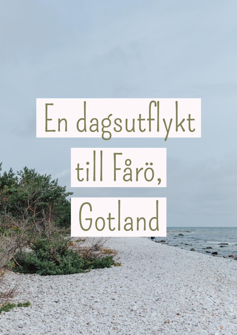 Dagsutflykt Fårö, Gotland