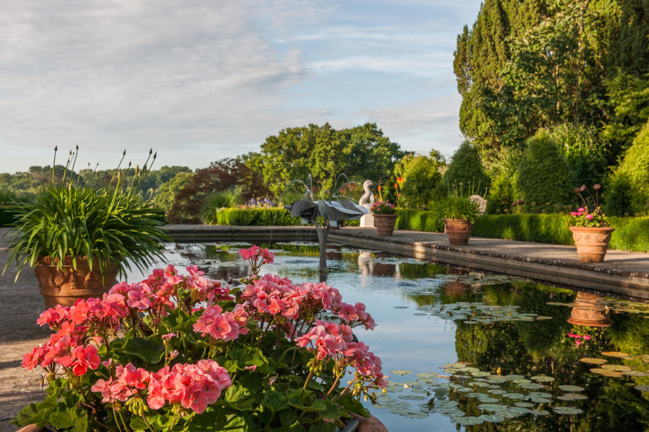 Borde Hill Garden gpond1096 formal pond J Glover.jpg