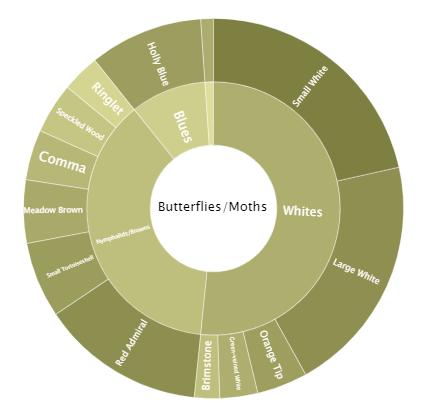 Butterflies over 1 Year