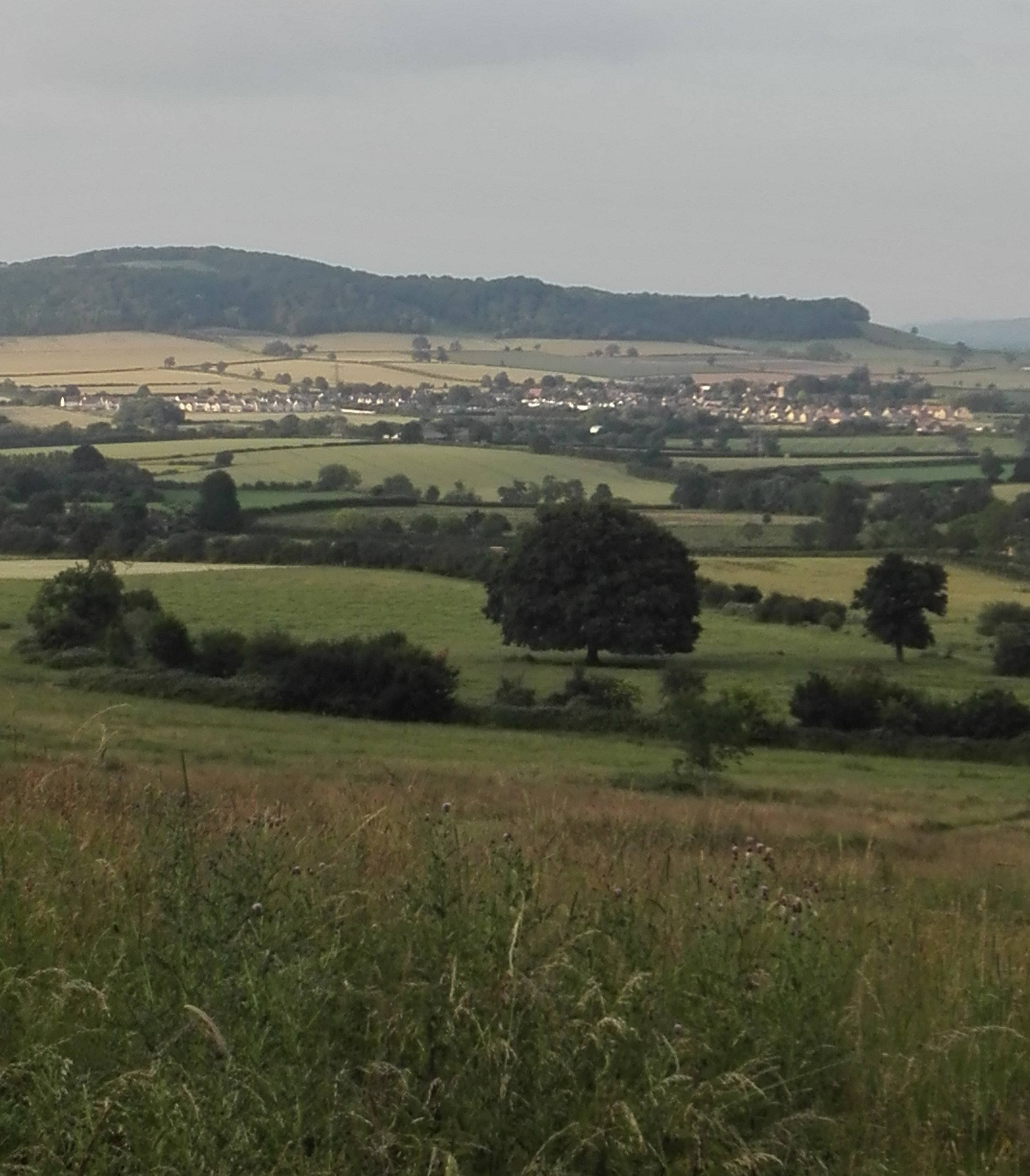 View towards Alderton Hill, Cotswold AONB