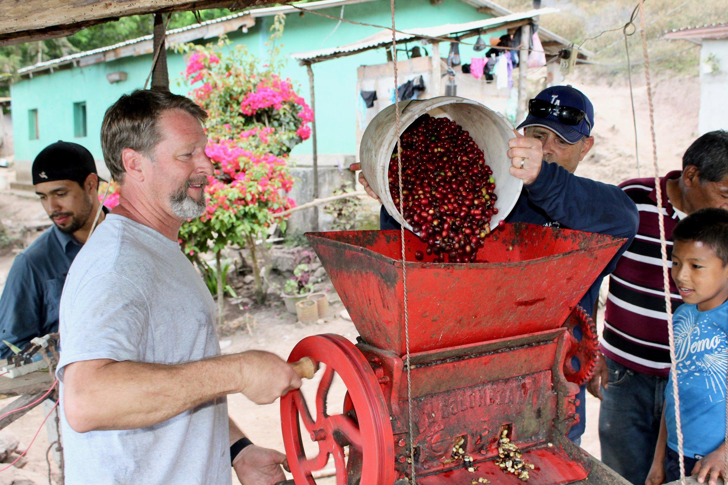 Processing Coffee Cherries