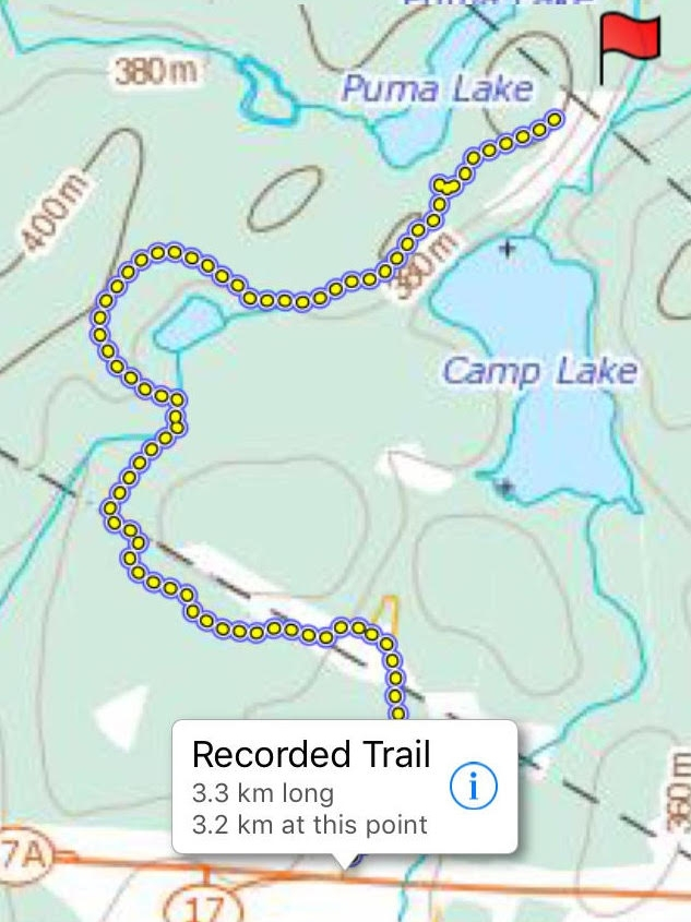 Camp Lake Trail (unofficial)