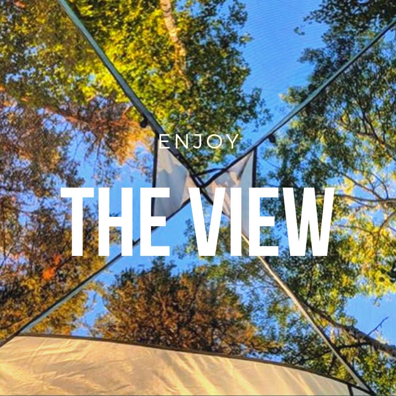 Natural Views - They say change your view, change your life! There's no greater view than peering up to beautiful trees and sunshine!