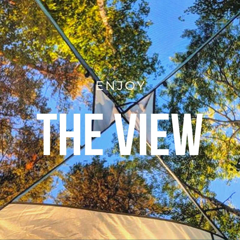the view 2.jpg