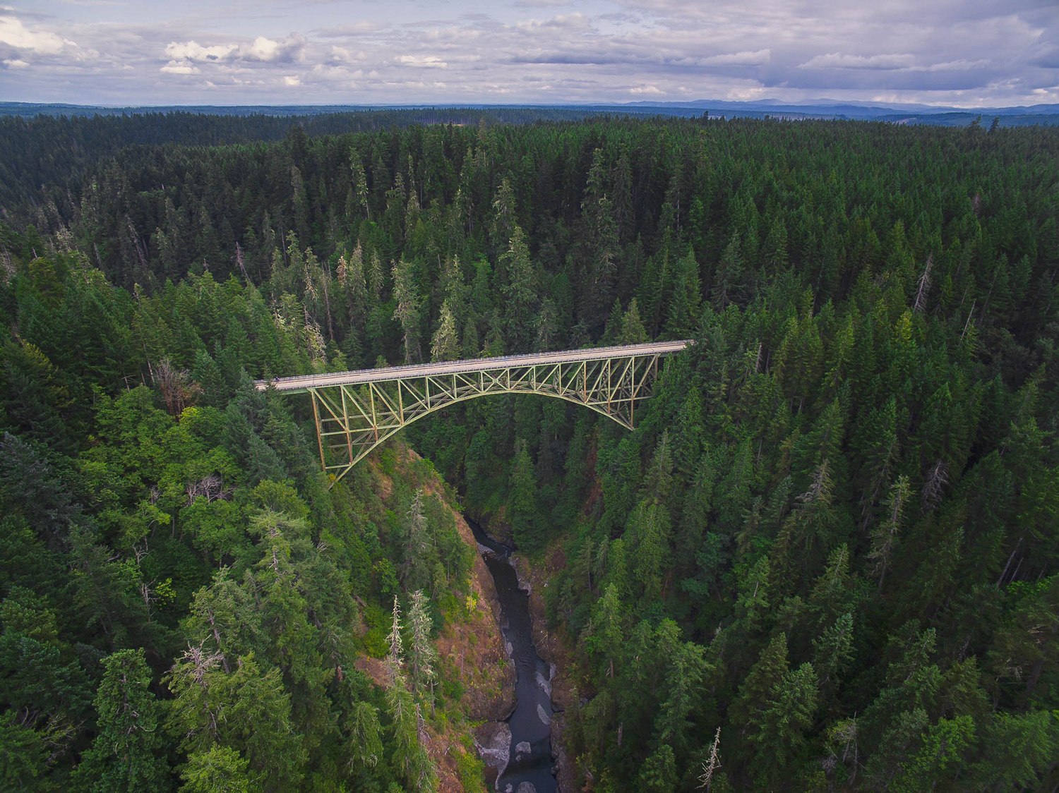 aerial-view-trees-bridge-river-drone-greg-unsplash.png