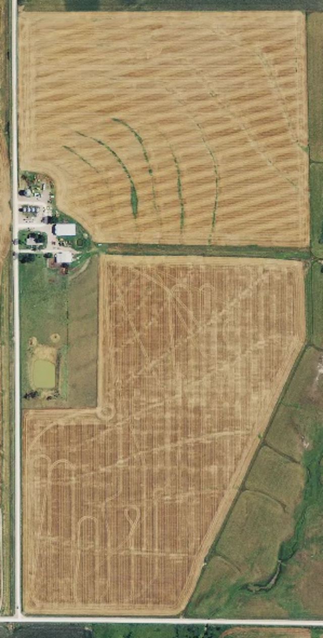 Use standard RGB imagery to save time and improve field scouting by identifying and going straight to the source of the problem without disturbing healthy crops.