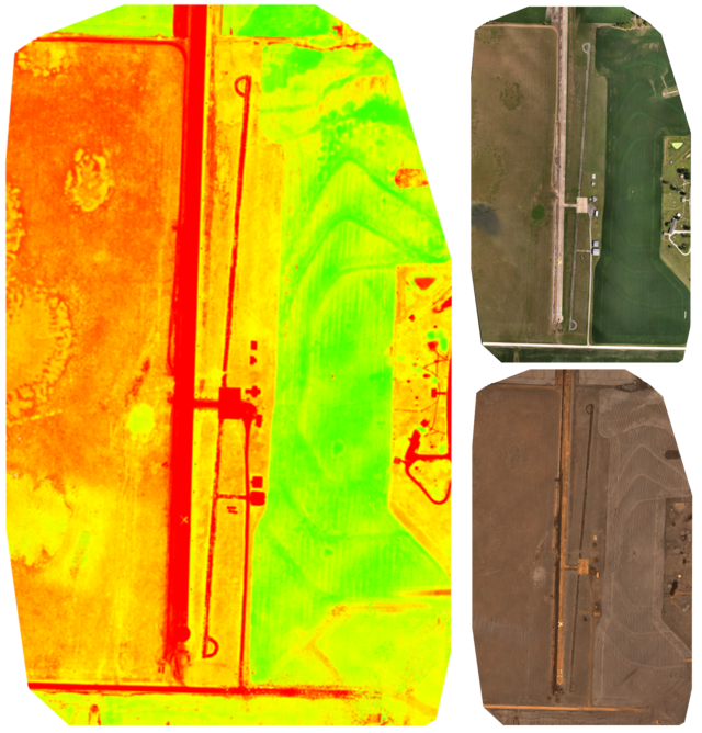 An NDVI orthomosaic map of an airstrip and nearby field (left) are made from a combination of RGB (top right) and NIR (bottom right) imagery. NDVI image processing makes variations in crop health more apparent than standard RGB imagery can.
