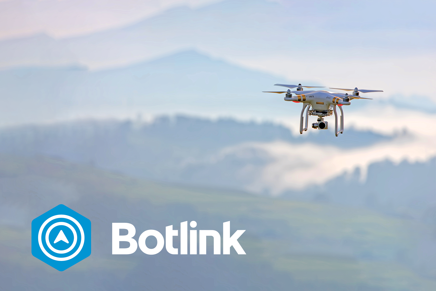 Botlink Logo and Drone.png