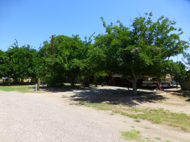 Front of house, nice shade trees - Copy.JPG