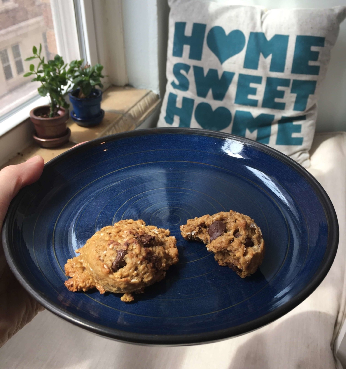 cookies-pb-oatmeal-choc-chip.jpg