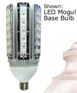 dual head led bulb.png