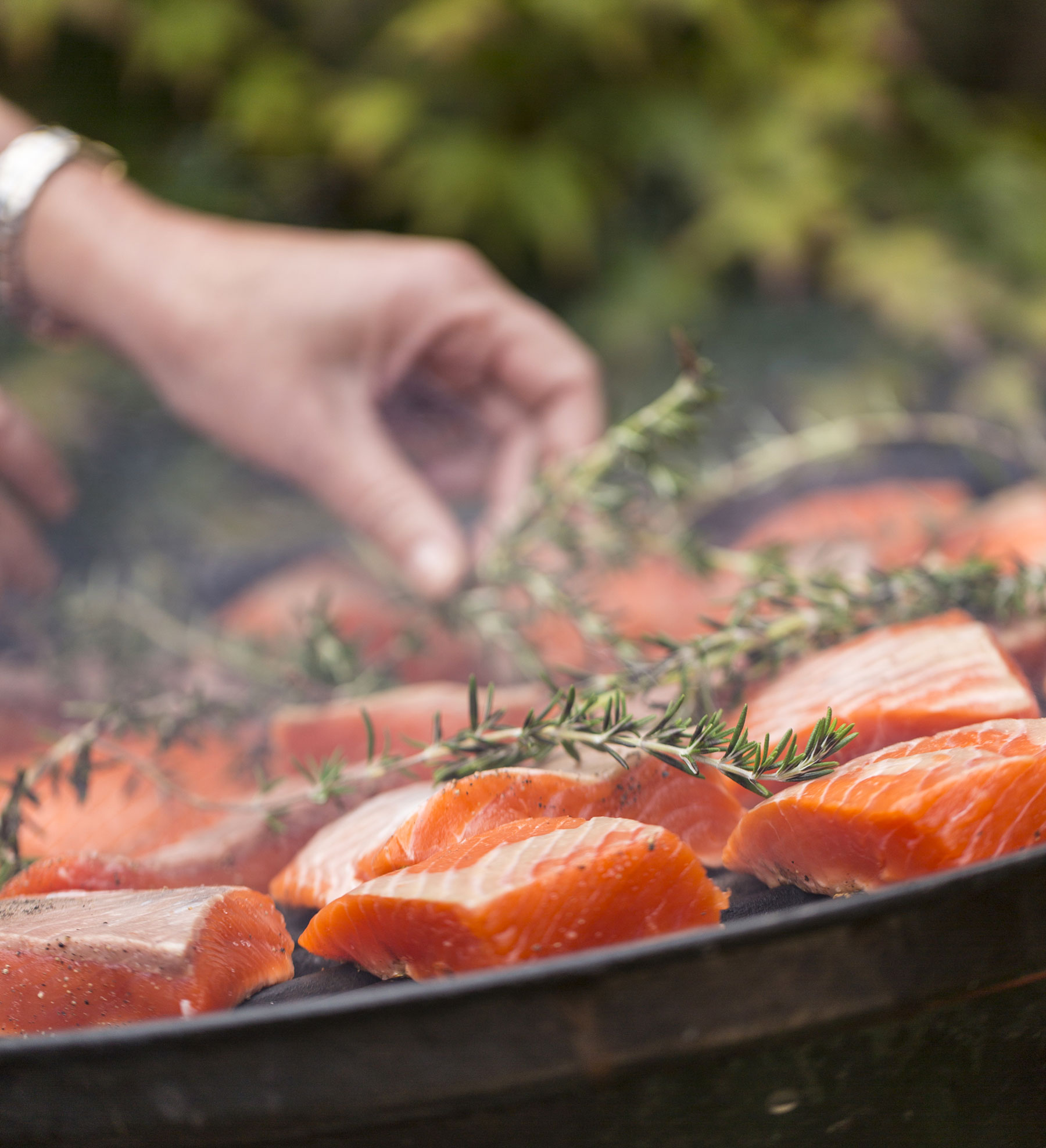 a close up of a hand placing rosemary on salmon steaks on an outdoor barbeque