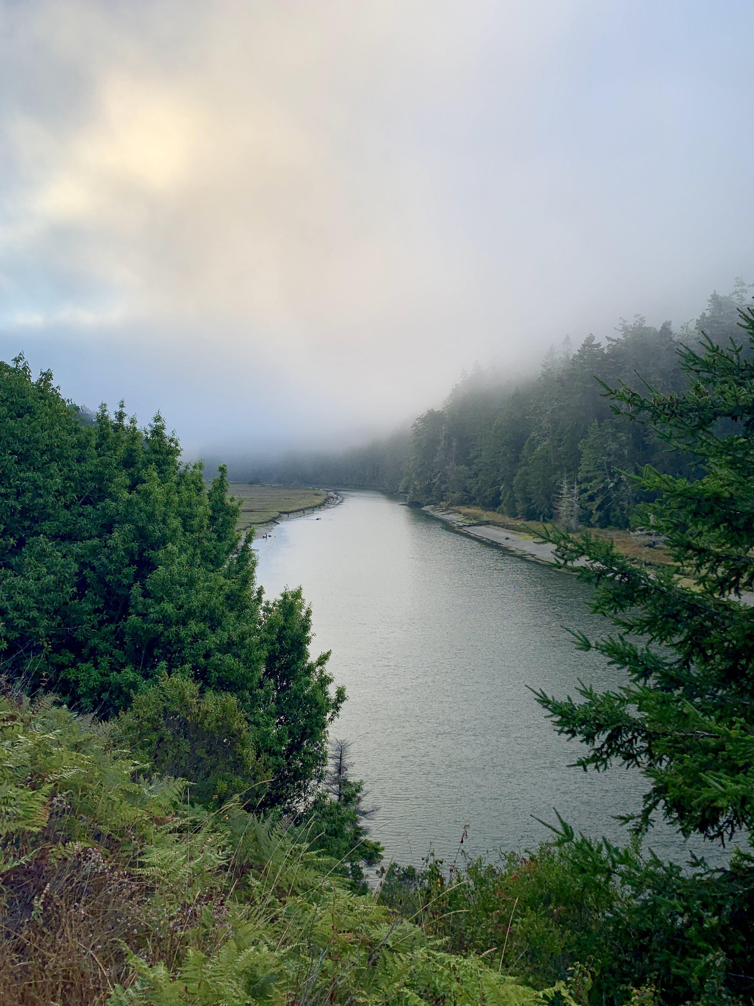 Glorious morning fog.