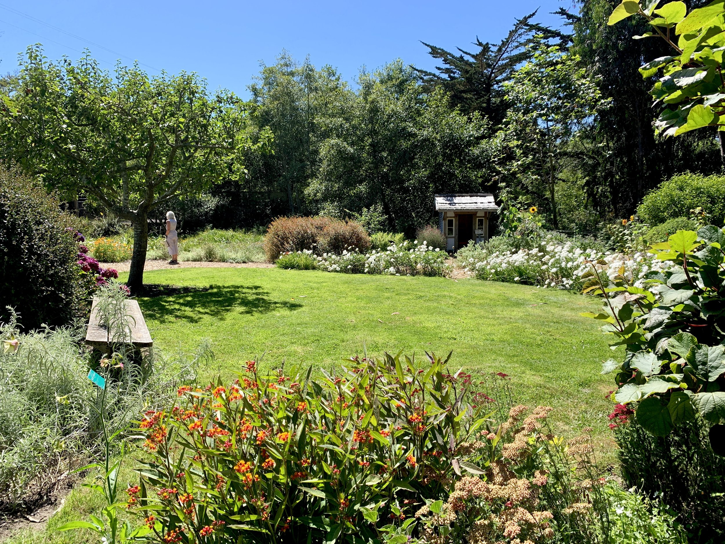 A charming corner in the vegetable garden