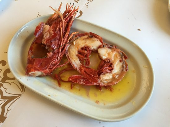 scarlet-shrimp.jpg