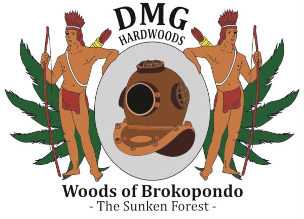 DMG Logo.png