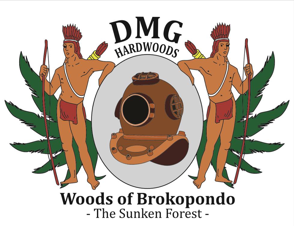 DMG Logo Resize.png