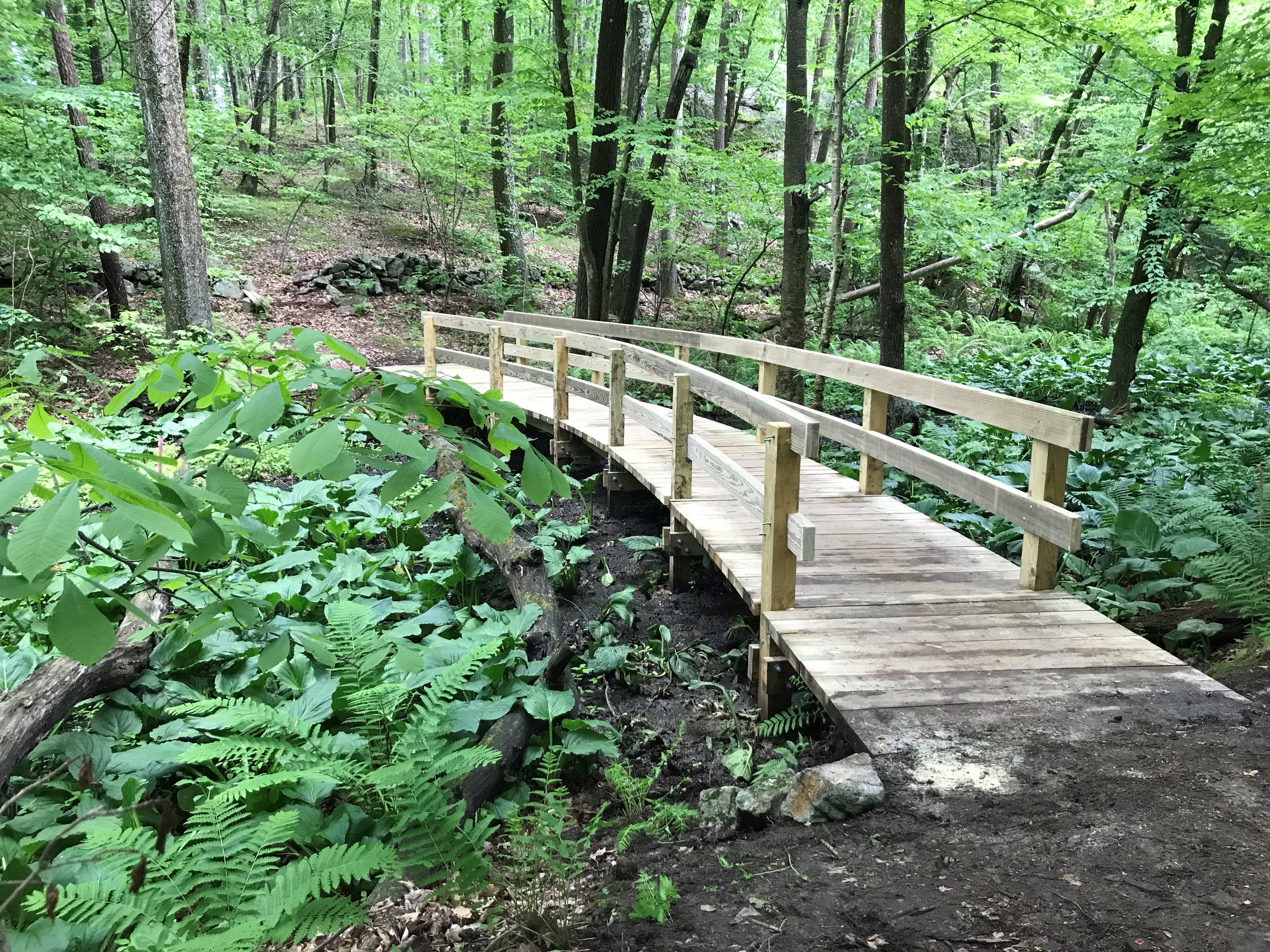 The completed boardwalk at Nason Conservation land. #184 Lake Shore Rd and Route 133