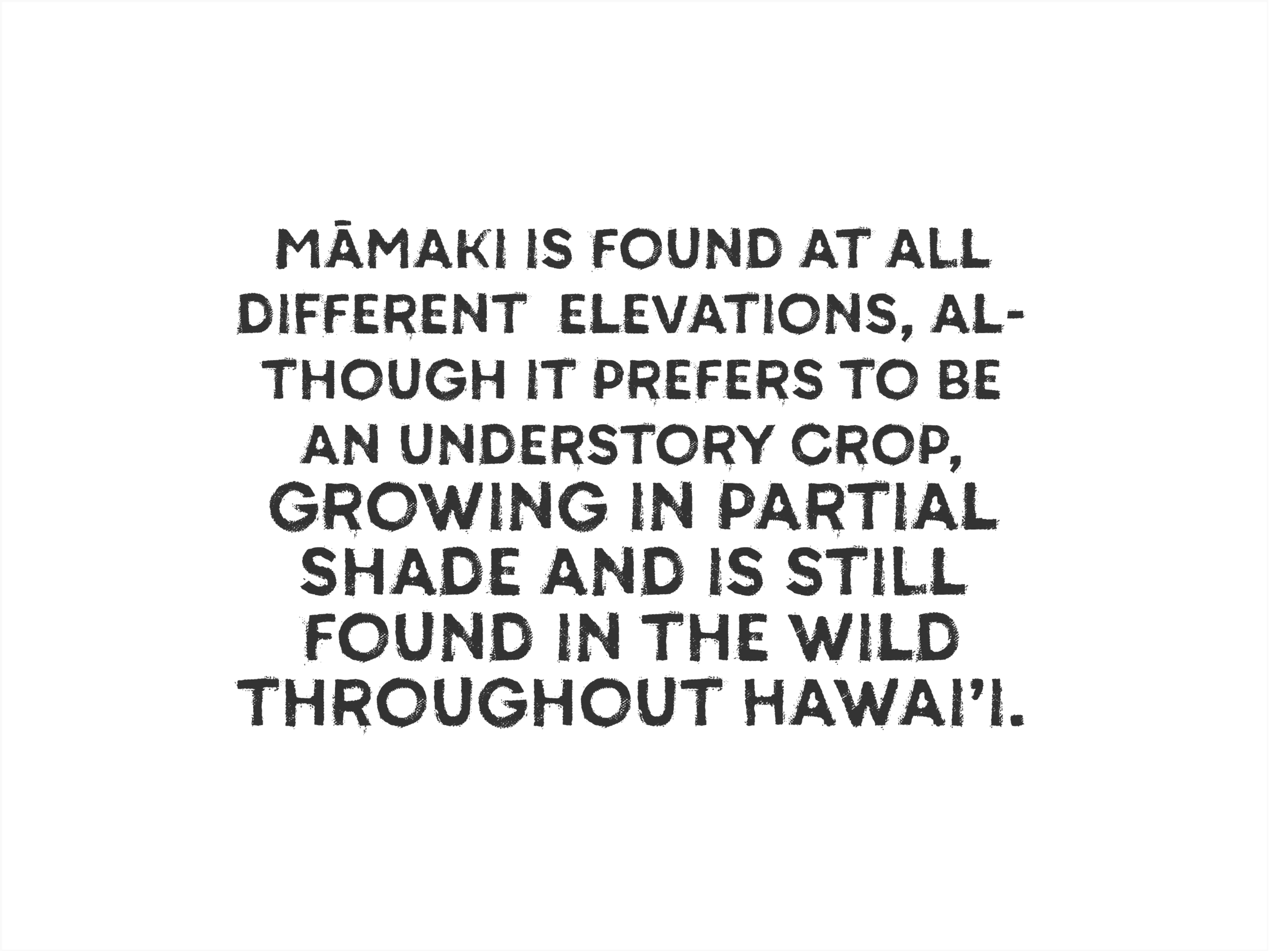 Mamaki_Facts_Gallery-04.png