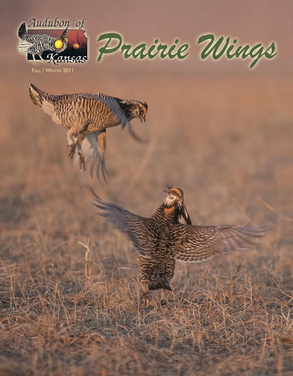 Prairie Wings 2011 cover.jpg