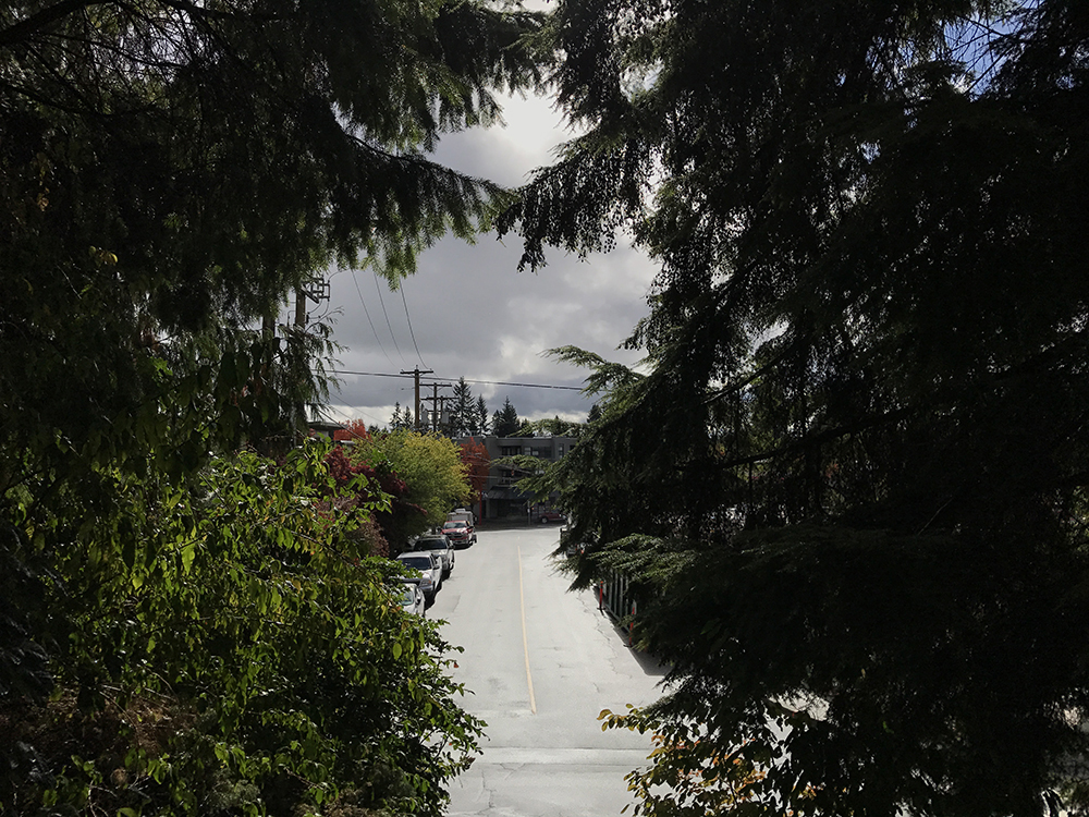 View from Ayr road, North Vancouver 2017