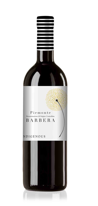 Wine-Indigenous-single-piemontebarbera.jpg