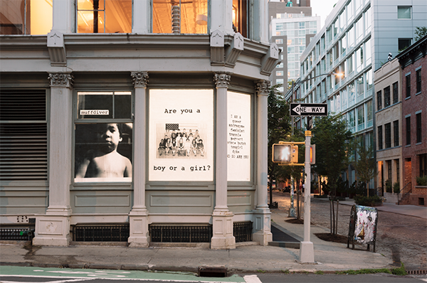 """[image description: exterior of the Leslie-Lohman Museum, all of the windows on the ground floor are covered in artwork. the art in the windows is of different portraits of the members of Fierce Pussy overlayed with different pejorative texts or phrases, in this case """"Are you a boy or a girl""""]"""