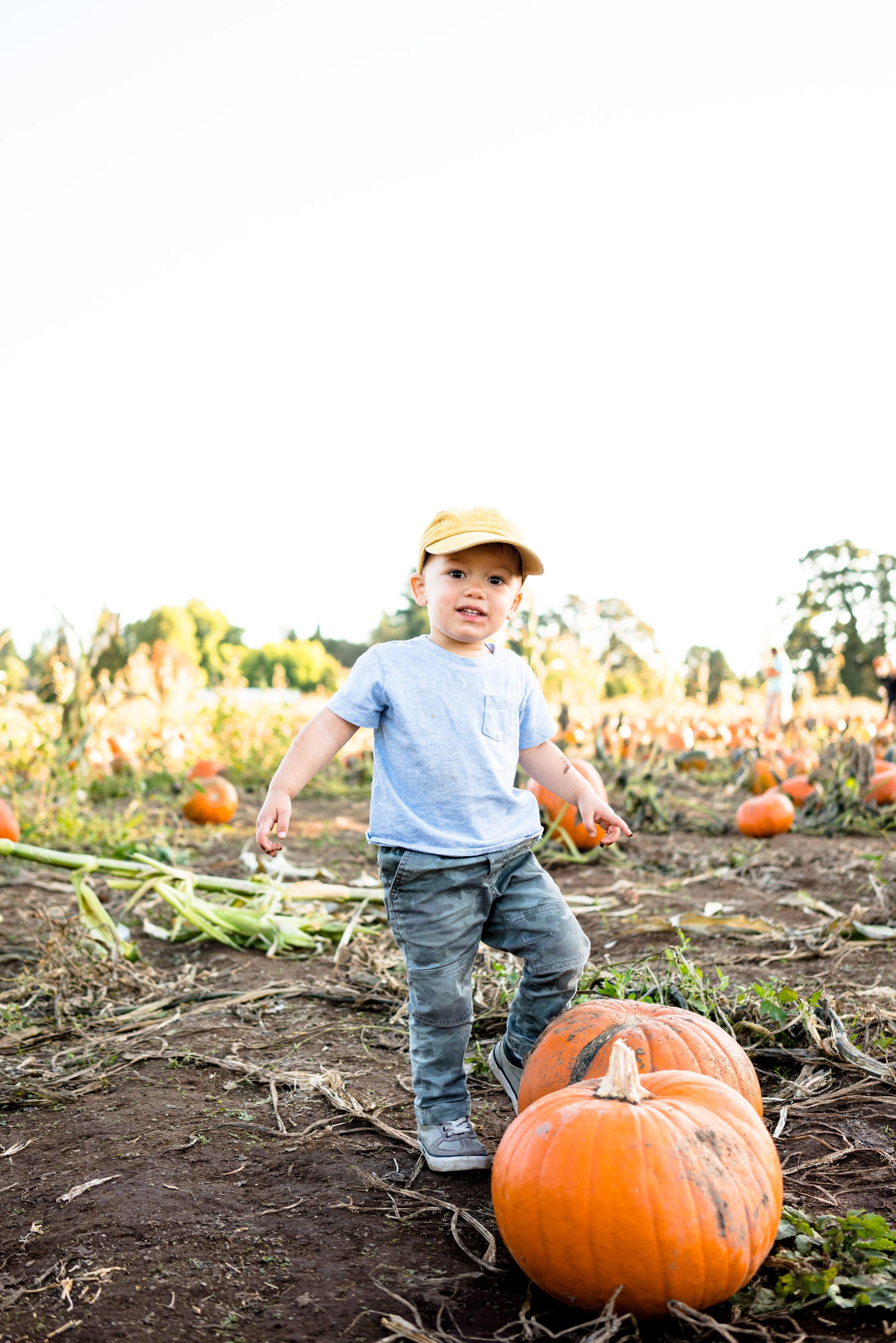 Pumpkin_Patch_2019-28.jpg