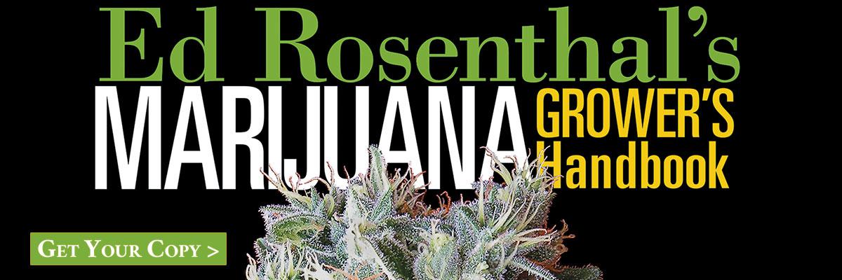 Marijuana Grower's Handbook is the official course book at  Oaksterdam University .