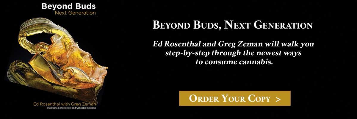 Beyond-Buds_Website.jpg
