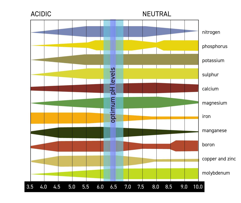 Ed_Rosenthal_ph_nutrient.jpg