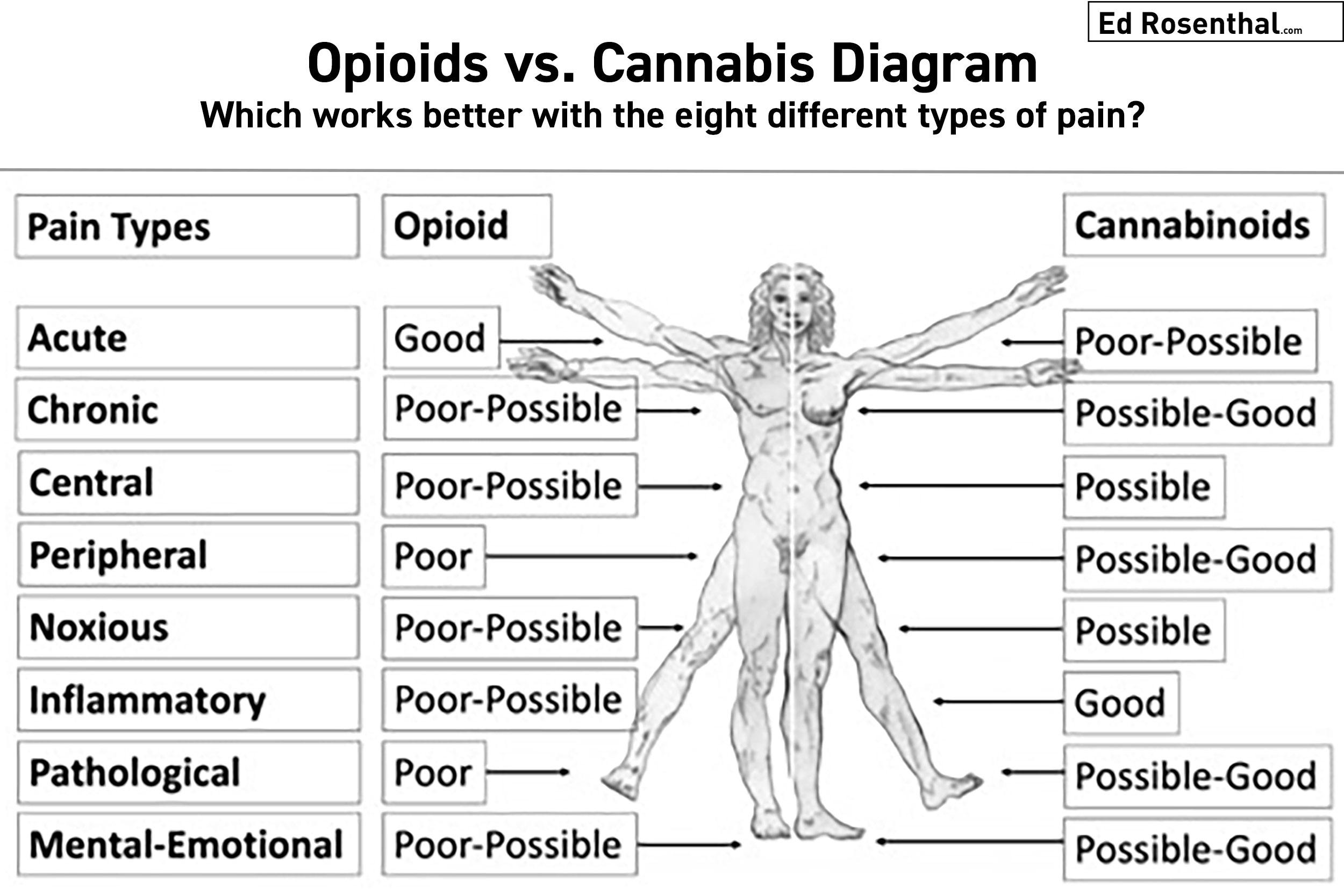 Opioids vs. cannabis diagram:    Which works better with the eight different types of pain?