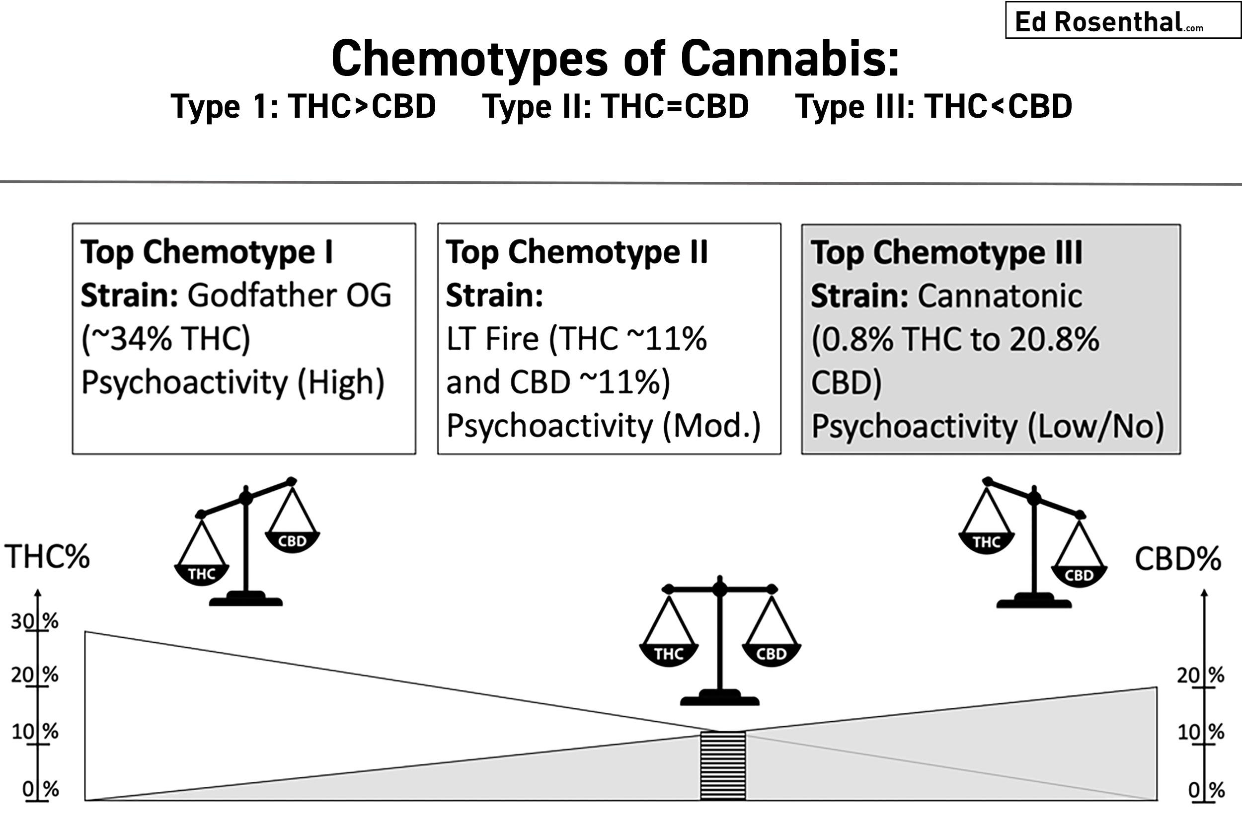 cananbis-chemotypes-ed-rosenthal-uwe-blesching.jpg