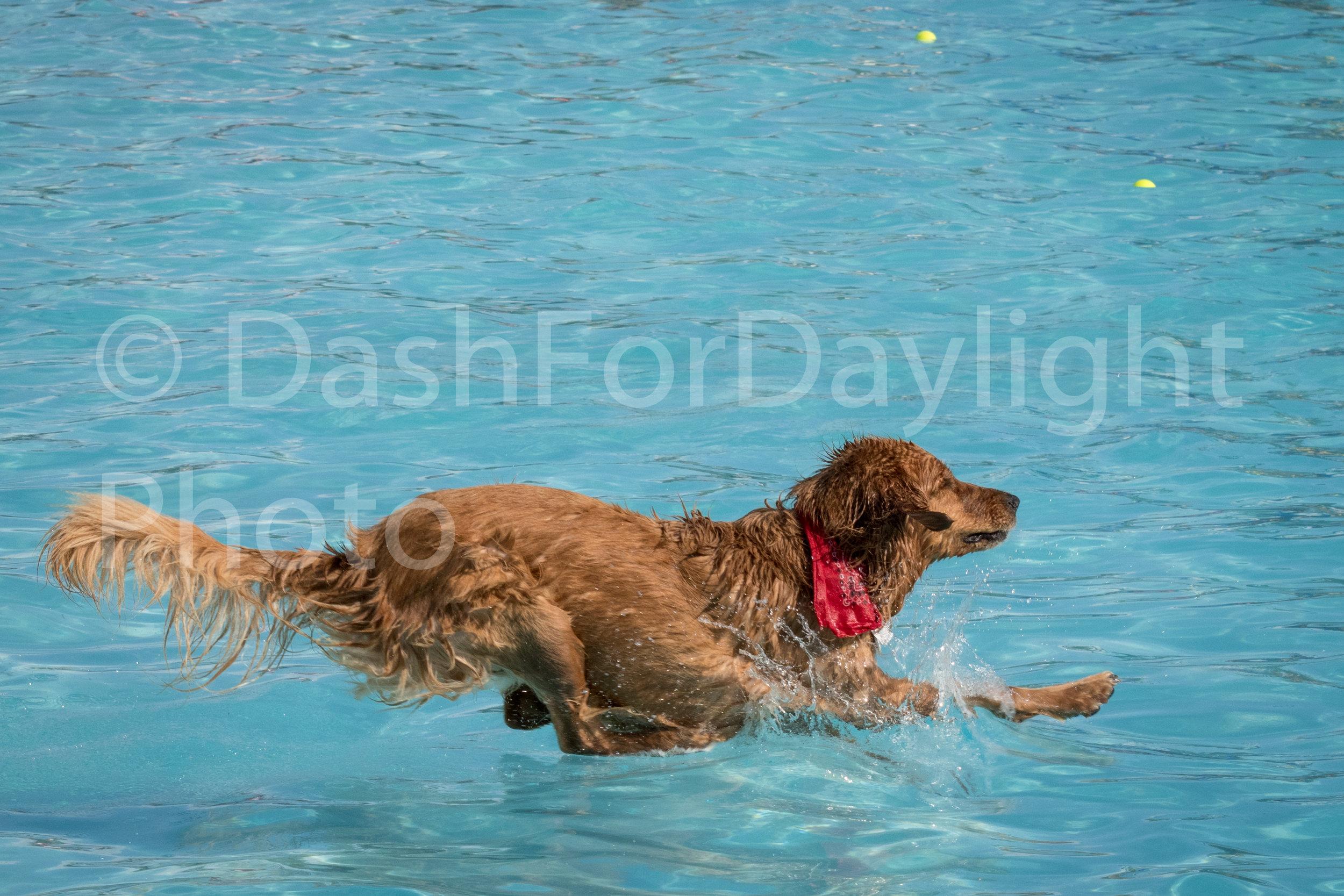 #1106 Turner Splashdown