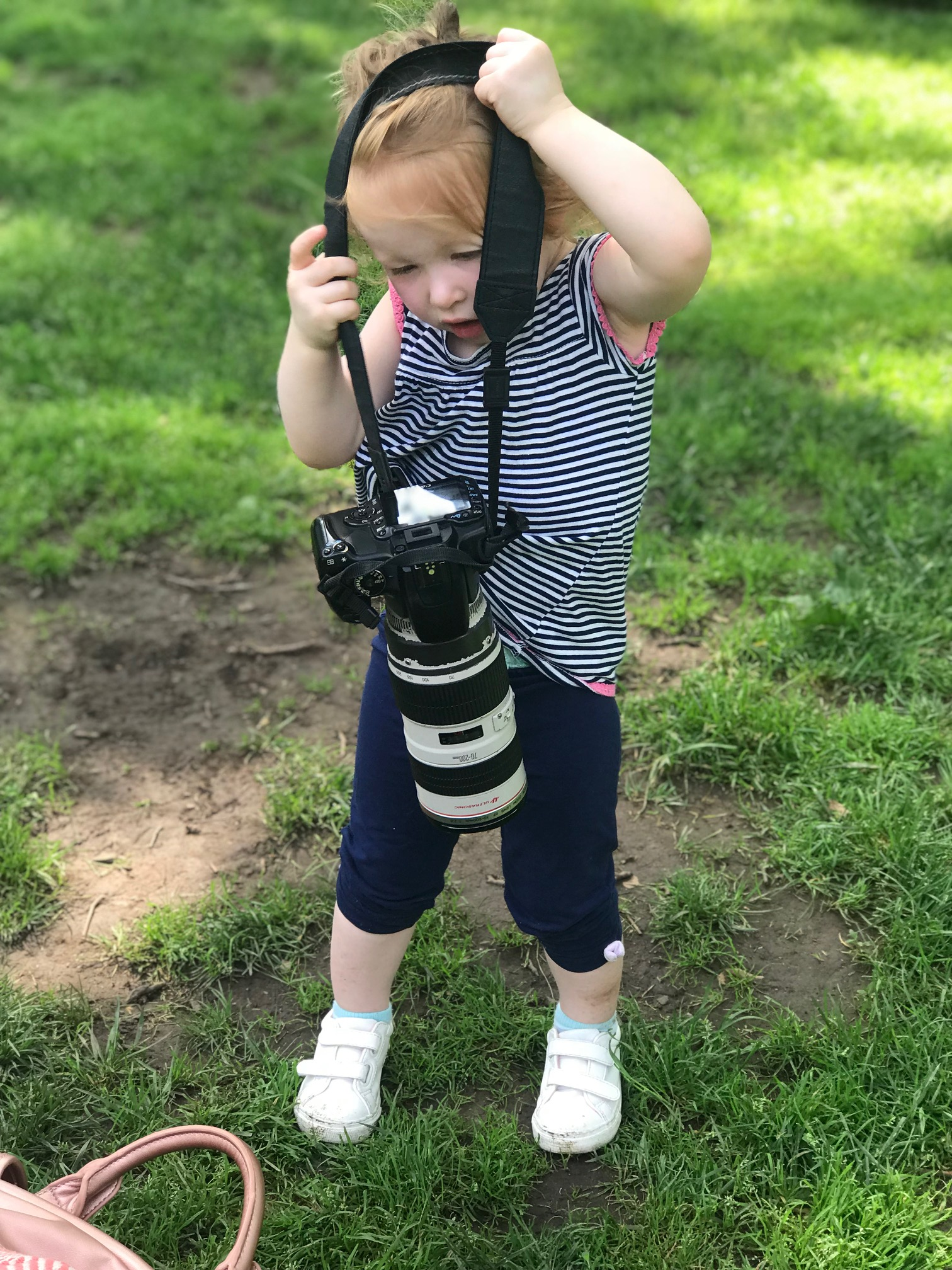 My assistant