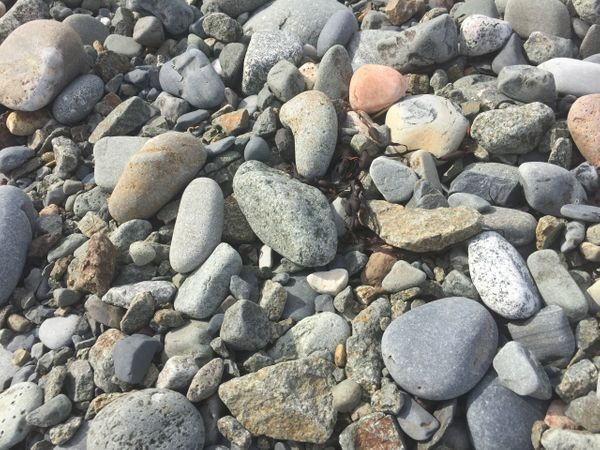 Cobbly seabed stones.