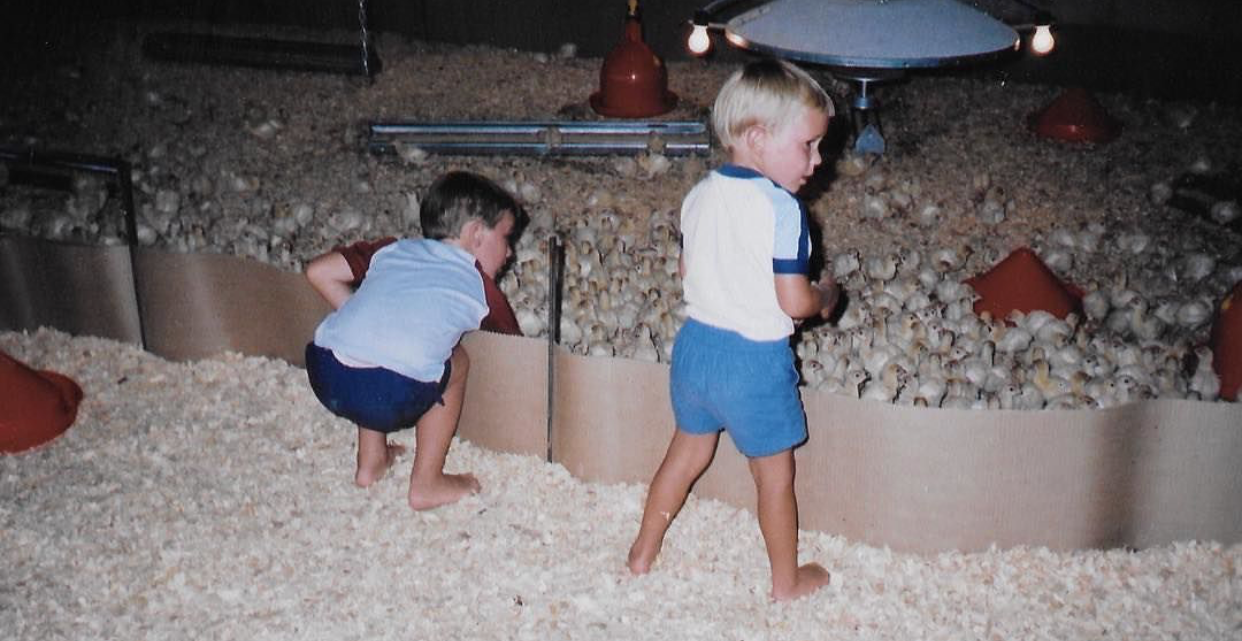 Founder & CEO of Shenandoah Valley Organic, Corwin Heatwole (pictured right), on his family's turkey farm at three years old, with his brother, Bradly Heatwole of  Pine Ridge Poultry  and  Red Bud Acres . No one is more passionate about poultry than Corwin.