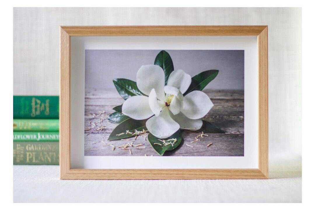 Magnolia+framed+ready.jpg