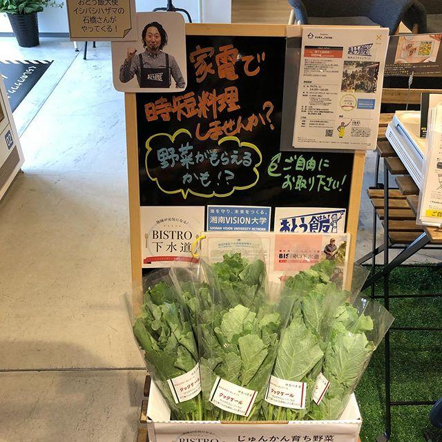 9月7日にイシバシハザマの石橋さん先生の料理教室を開催します〜!今回は家電でちゃっちゃと時短料理♪使う食材は今話題のじゅんかん育ちっ!当日はじゅんかん育ち野菜ももらえちゃうかも⁉︎#クラシンク #kura_think #イシバシハザマ #イシバシハザマ石橋さん #bistro下水道 #じゅんかん育ち #湘南ビジョン大学 #おとう飯