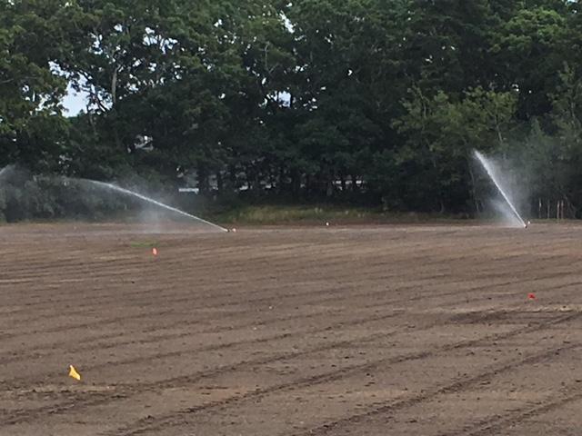 OB Irrigation on.JPG