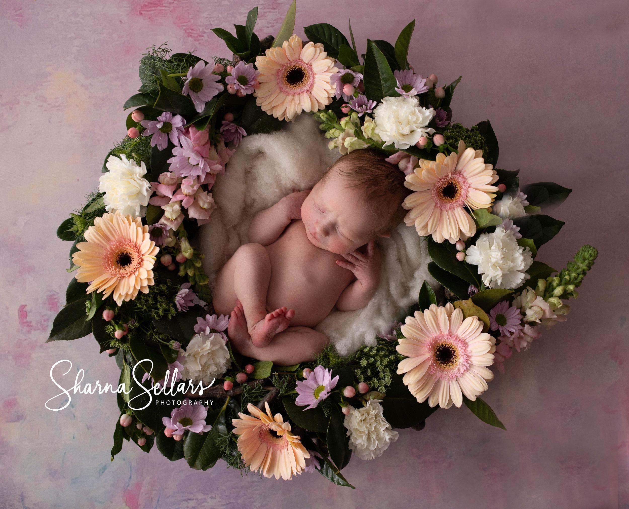 124A3466-Edit2019-28-2019 Aleeya newborn.jpg logo.jpg