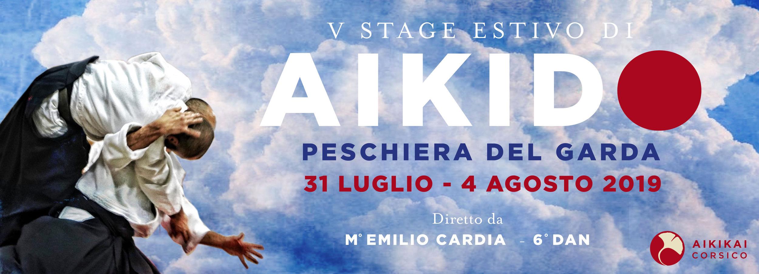 5° stage estivo condotto da Emilio Cardia, Vl dan Aikikai