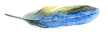 feather3.png