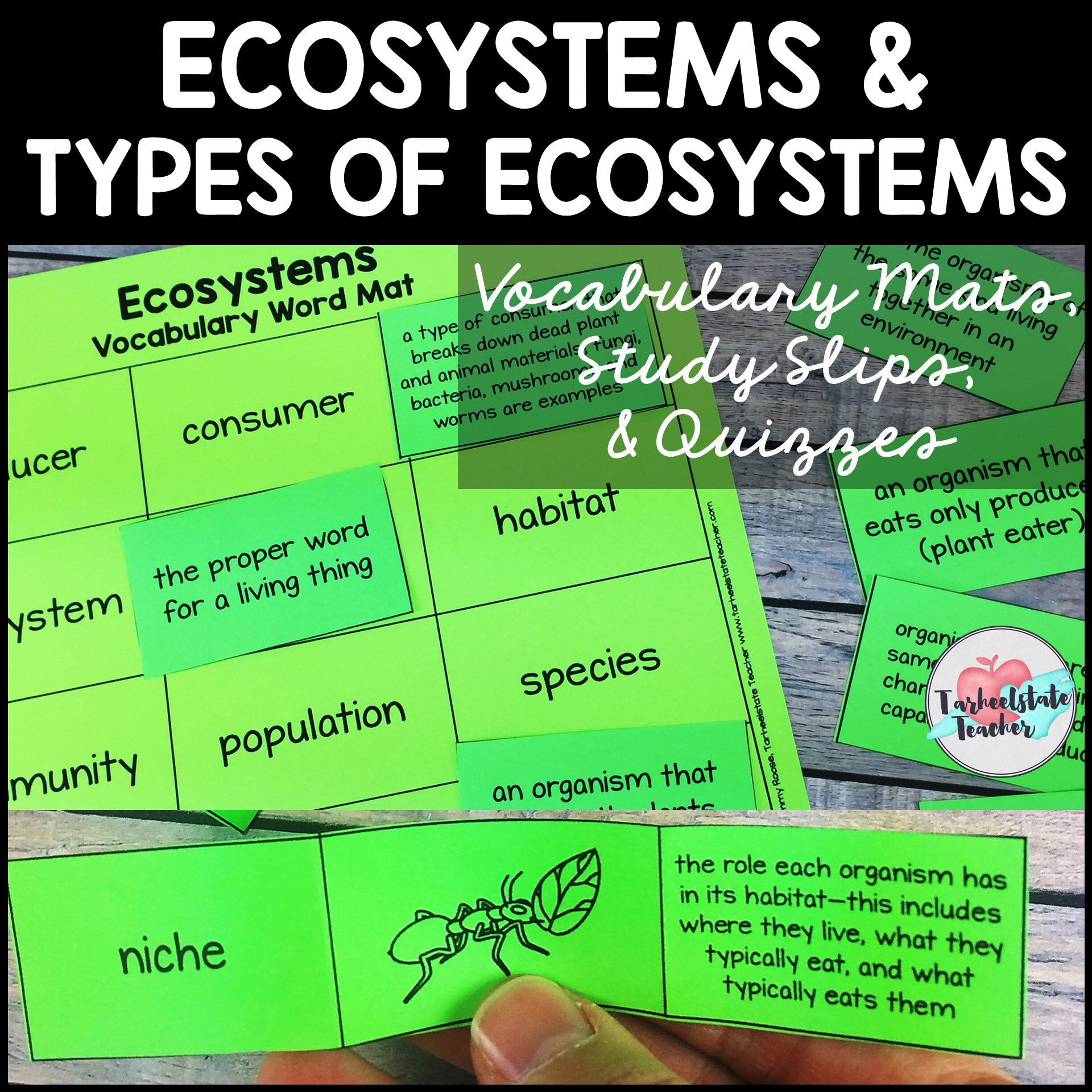 ecosystems vocabulary biomes vocabulary.JPG