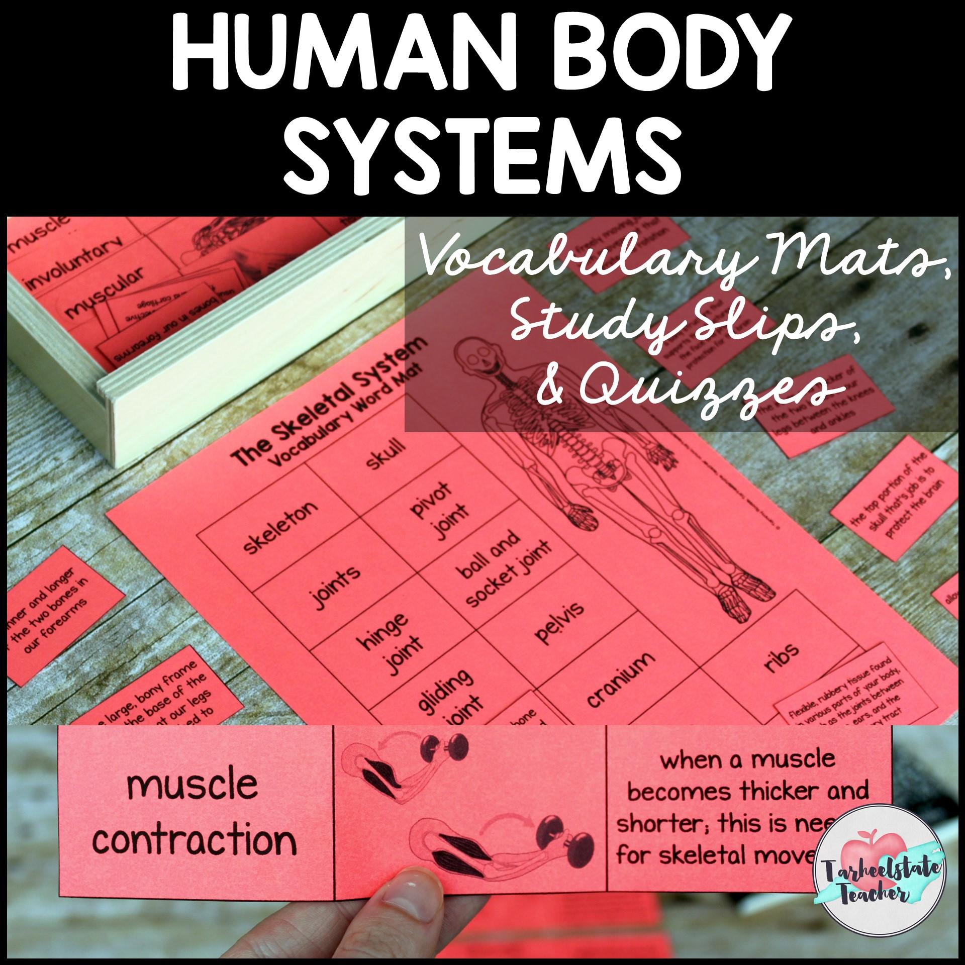 HUMAN BODY SYSTEMS VOCABULARY SETS.jpg